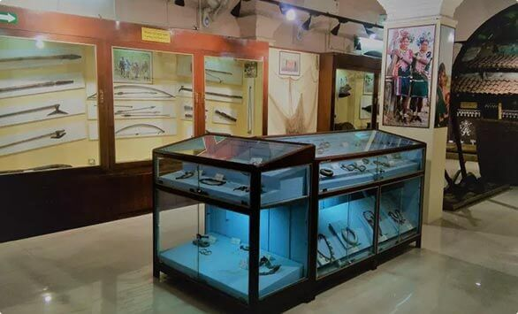 Museum Of Anthropological Survey in Nagpur