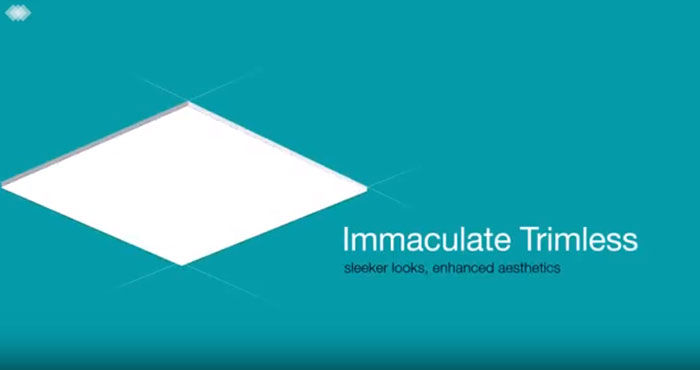 Immaculate Trimless